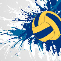 Первенство Центрального Федерального округа по волейболу среди команд юношей 2008-2009 гг. рождения