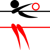 Финальные соревнования Первенства России по волейболу среди юношей 2007-2008 гг.рождения